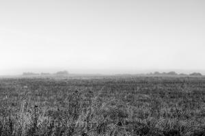 Morning Fog II - Normandy, France