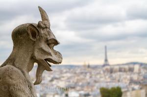 Paris from Atop Notre Dame - Paris, France